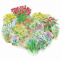 Hot-Season Garden