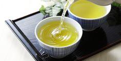 trà xanh ức chế sự phát triển của vi khuẩn hp