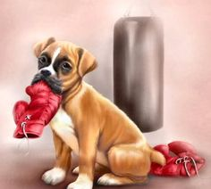 Baby Boxer by Penny Parker Boxer And Baby, Boxer Love, Boxer Puppies, Baby Puppies, Decoupage, Penny Parker, Baby Animals, Cute Animals, Top Imagem