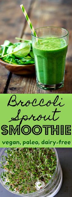 Broccoli sprouts in a smoothie is a quick and easy way to get this superfood into your diet. Frozen fruit helps mask the strong flavor as well, so it's a double-win. | Vegan smoothie, paleo green smoothie, broccoli sprout smoothie, dairy-free smoothie via @cleaneatingkitchen