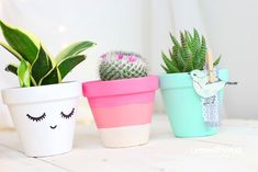 Pots can be decorated with clipped or glued stuff Painted Flower Pots, Painted Pots, Cacti And Succulents, Potted Plants, Diy Tumblr, Diy Planters, Terracotta Pots, Garden Pots, Bunt