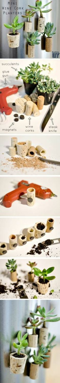 DIY: Tiny Planters From Upcycled Wine Corks