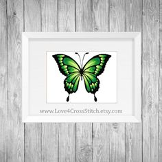 Green Butterfly Cross Stitch Pattern Modern, Large Green Butterfly Cross Stitch, Ombre Butterfly Emerald Cross Stitch, Pattern Green Wings  This PDF counted cross stitch pattern available for instant download. Floss: DMC Fabric: AIDA 14-count ( other AIDA Fabric Counts may be used, the finished pattern will be different in size) Number of Colors: 8 Full Cross stitches only Size: 350x 292 stitches ( 25.00 x 20.79 on 14 ct Aida)   There is no background around the butterfly to be stitched. You…