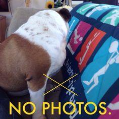 No photos.