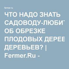 ЧТО НАДО ЗНАТЬ САДОВОДУ-ЛЮБИТЕЛЮ ОБ ОБРЕЗКЕ ПЛОДОВЫХ ДЕРЕВЬЕВ? | Fermer.Ru - Фермер.Ру - Главный фермерский портал - все о бизнесе в сельском хозяйстве. Форум фермеров.