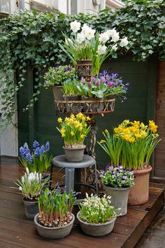 Flower Planters, Garden Planters, Outdoor Landscaping, Outdoor Gardens, Beautiful Flower Arrangements, Garden Landscape Design, Bulb Flowers, Summer Garden, Garden Planning
