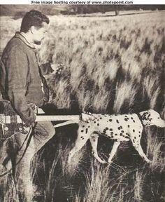 Eddie Van Halen and his dog, Sherman.