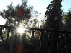 Always find the light...: Un ligero manto invernal