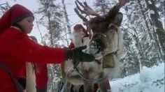 An elf and reindeer.