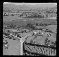 Orchards at Otumoetai, Tauranga