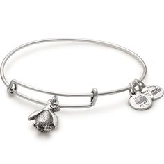 Penguin Charity Charm Bangle - Association of Zoos and Aquariums (Rafaelian Silver)