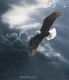 Eagle in clouds