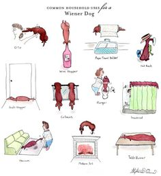 This is fabulous!  Love it!  Dachshund Art Common Household Uses for a Wiener by ShesSOCreative, $20.00