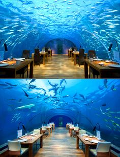 Incredible look at Ithaa, the world's first undersea restaurant, located in the Maldives.