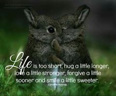 Life is too short, Hug a little longer, Love a little stronger, Forgive a little sooner  And, smile a little sweeter. ~ Caroline Naorojl #poem #poetry #heal