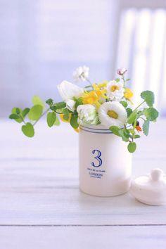 フラワー&フォトスタイリスト海野美規です。四季折々の花と庭の愉しみをお届けします。ガーデニングシーズンが待ち遠しい今日この頃。育てること、小さなアレンジにしてテーブルに飾ること・・・。この春、「庭摘み花」のアレンジを愉しみませんか。 まだまだ庭は冬 Flowers For Mom, Home Flowers, Happy Flowers, Table Flowers, Green Flowers, Small Flowers, Amazing Flowers, My Flower, Flower Vases