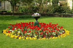 Beautiful lawns flower gardens