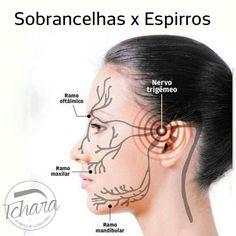 Sobrancelhas Eyelashes, Eyebrows, Eyelash Extensions, Health Tips, Digital Marketing, Piercing, Hair Beauty, Makeup, How To Make
