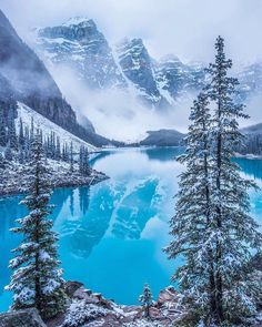 Winter wonderland at Moraine Lake (Banff National Park, Alberta). By Carmen MacLeod, - SScouterSS Winter Landscape, Landscape Photos, Landscape Photography, Nature Photography, Banff Photography, Travel Photography, Photography Training, Photography Magazine, Night Photography
