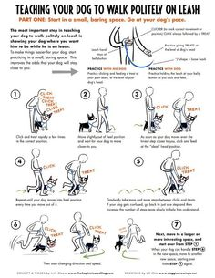 <3 Ernie [Teaching Your Dog to Walk Politely]