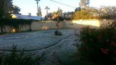 Yikes there is frost on the grass I hope the plants on the wall didn't get hurt.  Dw