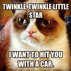 30 Very Funny Grumpy Cat Meme Pictures And Photos Source by kgrapengeter videos wallpaper cat cat memes cat videos cat memes cat quotes cats cats pictures cats videos Grumpy Cat Memes Clean, Grumpy Cat Quotes, Cat Jokes, Grumpy Cat Humor, Grumpy Cat Movie, Funny School Pictures, Funny Sports Pictures, Meme Pictures, Cute Animal Memes