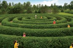 Ottawa with kids: top attractions for tykes in Canada's capital city - Lonely Planet Ottawa Tourism, Attraction, Ottawa Canada, Canada Ontario, Canadian Travel, Visit Canada, Fun Events, Summer Activities, Ottawa Activities