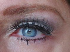 Holiday eye look-pics, review, swatches! Prime Beauty Blog
