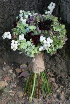 Bridesmaids bouquets with local hydrangea, purple scabiosa and white snowberries (Chocolate Bouquet With Photos) Winter Bridal Bouquets, Winter Bouquet, Fall Wedding Flowers, Wedding Bouquets, Chocolate Cosmos, Chocolate Bouquet, Country Barn Weddings, Bridesmaid Bouquet, Bridesmaids