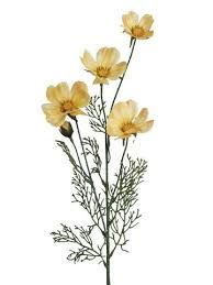 Image result for yellow artificial geraniums stem