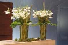 #Blumen-Abonnement Glass Vase, Decorations, Business, Flowers, Plants, Home Decor, Lucerne, Decoration Home, Room Decor
