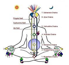 °Yoga Pranayama Awakens Kundalini Powers - °NOTE 'Moon Channel' & 'Middle path' are naming the wrong line - Sushumna Nadi is Middle Path & Ida Nadi is Moon Channel ! Pranayama, Yoga Kundalini, Chakra Meditation, Yoga Chakras, Yoga Hatha, Shiva Yoga, Shiva Shakti, Restorative Yoga, Chakra Heilung