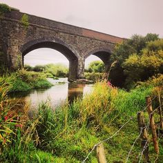 Railway Bridge over the river, overlooking the meadows between old Poundbury and Bradford Peverell.