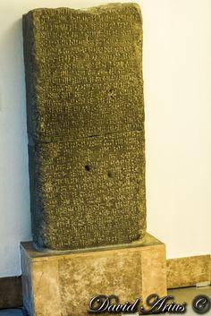 Pergamon Museum, Animal Print Rug, Rugs, Home Decor, Farmhouse Rugs, Decoration Home, Room Decor, Home Interior Design, Rug