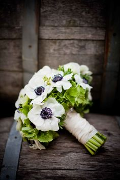 The bridesmaids bouquets will be green hydrangeas and white anemones wrapped in black ribbon.