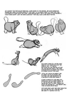 Cat Anatomy Notes ★ || CHARACTER DESIGN REFERENCES™ (https://www.facebook.com/CharacterDesignReferences & https://www.pinterest.com/characterdesigh) • Love Character Design? Join the #CDChallenge (link→ https://www.facebook.com/groups/CharacterDesignChallenge) Share your unique vision of a theme, promote your art in a community of over 50.000 artists! || ★