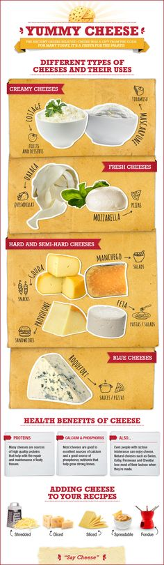 A Cheese Course: The Basic Types and Uses of Cheese | QueRicaVida.com #infographic