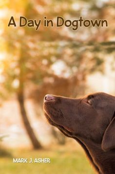 Retriever du labrador labrador dogs pinterest labradors a day in dogtown by mark j asher be sure to check out this childrens book by my friend mark asher fandeluxe PDF