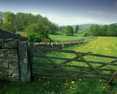 Quintessential British countryside in summer