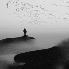 Welcoming by janini (Zhana Topchieva) Photo Black, Some Pictures, Pretty Pictures, Image Photography, Black And White Photography, Surrealism, Cool Photos, Amazing Photos, Whale