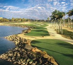 Doral Golf Resort - The Great White Course - in Miami, Florida.  A Greg Norman signature course & the only course in the southeast with crushed shell, coquina roughs.