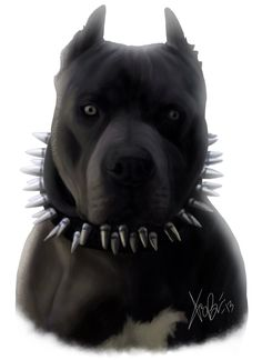 black pitbull puppies with blue eyes Pitbull Terrier, Pitbull Noir, Black Pitbull Puppies, Pitbull Blue, All Black Pitbull, Pitbull Tattoo, Pitbull Drawing, Beautiful Dark Art, Beautiful Dogs
