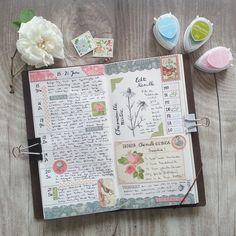 week 25 in my #midoritravelersnotebook #travelersnotebook #midori #planneraddict #planner #plannercommunity #plannerlove #journal #artjournal