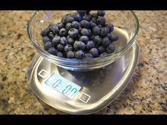 How To Appeal Weight Loss Calorie : Weight Loss Diary | Counting Calories & Tare Digital Kitchen Scale Product Review