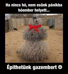 This is a Texas snowman! (made outta tumbleweeds! Creative Pictures, Funny Pictures, Comedy Pictures, Random Pictures, Creative Ideas, Funny Cute, The Funny, Funny Fails, Funny Jokes