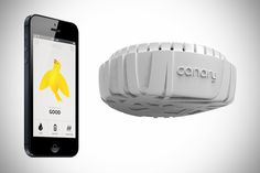 PSFK   Canary smart air sensor
