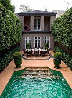 Symmetry adds the wow factor in this landscape design by Australia's Paul Bangay. Ficus hillii, is used as a pleached hedge on either side of pool. Root issues can be kept in check with a regular pruning regime and adequate root barriers or Ficus can be substituted with select Lilly Pilly; Waterhousea floribunda GREEN AVENUE. www.bangalownursery.com Pic homedit.com