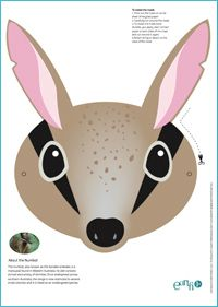 Make a numbat mask by eco-kids — Project Numbat