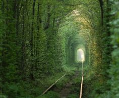 This beautiful tunnel looks like something out of a fairy tale. It's actually still used today — trains chu...