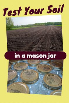 There is an easy and cost-effective way for you to test the quality of your garden soil at home. All this method requires is a lidded mason jar plus a little bit of background knowledge. Let...